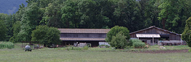 chindrieux_ferme saget-2.jpg